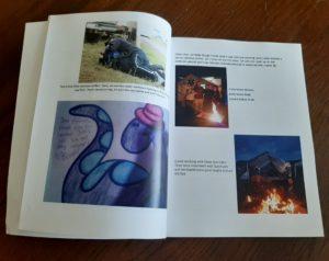The Festival Diaries